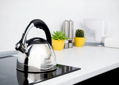Is-it-OK-to-leave-water-in-a-kettle image 1
