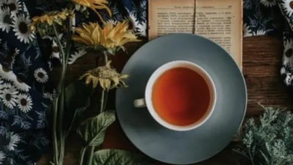 herbal-tea.webp