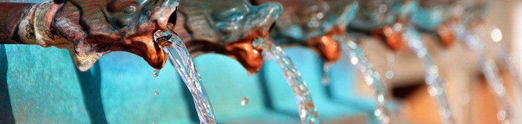Reality Check: How Safe Is the Drinking Water from a Public Fountain?